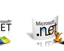 .net language an overview